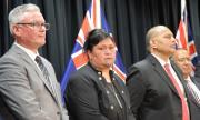 Разнообразно правителство в Нова Зелания