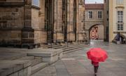 Чехия отваря границите със съседи