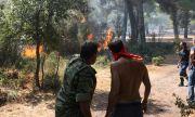 МВнР: Огънят край Вилия в Гърция продължава да се разраства
