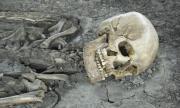Китайска пандемия загробва България през 14-и век
