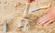Откриха погребален храм на 4500 г. край Кайро