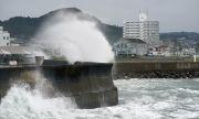 Снежни бури и ураганен вятър връхлетяха Япония