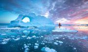 Първият цифров модел за екологичен мониторинг на Арктика