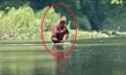 Голямата стъпка преминава през река в Мичиган с дете на ръце (ВИДЕО)