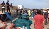 Лодка с 500 мигранти потъна край Италия