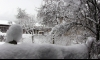 Сняг вали в Драгоман и Кюстендил