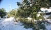 Снегът остави 15 хил. клиенти на ЧЕЗ без ток