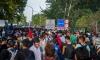 Бежанци пробиха полицейски кордони на границата между Хърватия и Сърбия