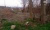 МОСВ: Общинарите в Стара Загора пуснали да се строи в Бедечка