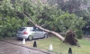 Буря наводни Асеновград