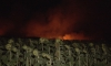 Потушиха голям пожар в Ямболско