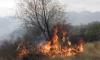 Пожарът над Рилския манастир се разраства /Обновена/