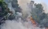 Трети ден продължава борбата с огъня в Сакар