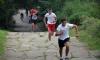 Над 200 деца ще тичат по стъпалата към Шипка