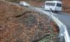 Активизира се свлачище по пътя Кърджали-Ардино