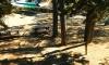Българка открита мъртва в кипърски къмпинг