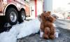 Психар застреля двама пожарникари и се самоуби