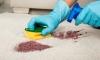 12 трика за блестящ от чистота дом