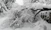 Жълт код за вятър и сняг в 15 области