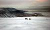 Арктически тест на Great Wall Hover - 7