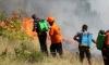 Пожар пламна в община Белица