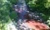 Спешна проверка след сигнал за замърсяването на река