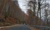 Свлачище на пътя Рила – Рилски манастир
